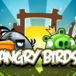 Rovio chystá další Angry Birds (Pigs), tentokrát z pohledu prasátek